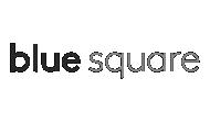 Blue Square real estate logo